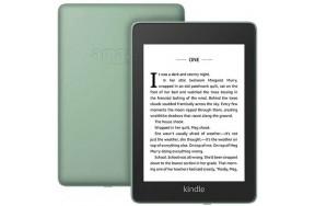 Электронная книга с подсветкой Amazon Kindle Paperwhite 10th Gen. 8GB Sage